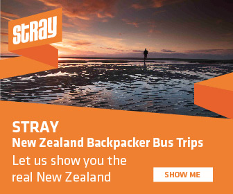 Stray New Zealand Backpacker Bus